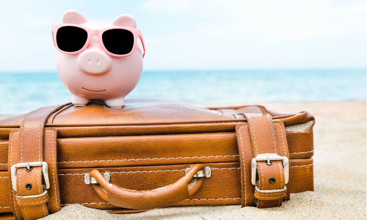 świnka skarbonka w okularach słonecznych na walizce