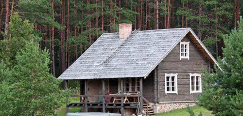 drewniany domek letniskowy wśród drzew